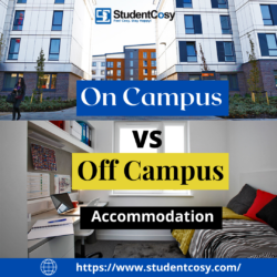On-campus vs off-campus accommodation